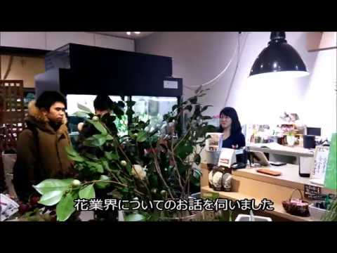 新潟 園芸 専門学校 見学 メディアシップ