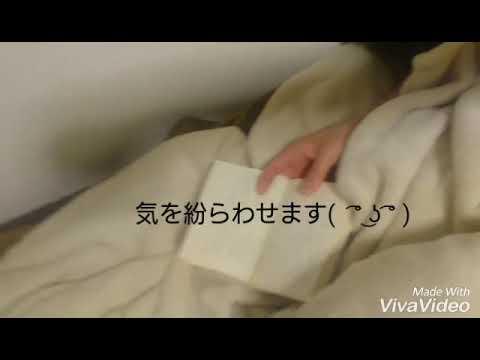 フリーター女一人暮らしのショボイ初動画