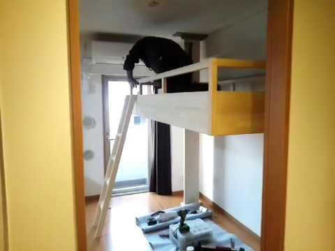 何と天井からベッドとハシゴが降りてくる!? 天井格納式の可動ロフトベッド作動状態動画