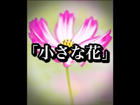 【心霊体験】「小さな花」事故現場の真実とは・・・【2ちゃんねる怖い話】