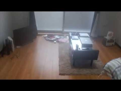 大学生の一人暮らし部屋紹介Vol.1 〜ありのままの部屋〜